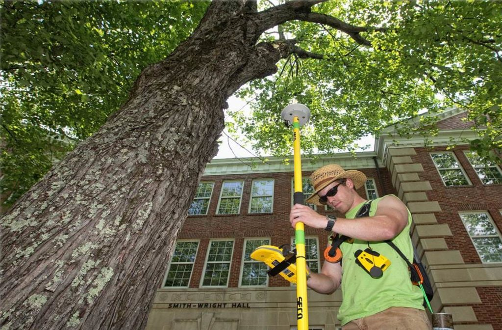 Arborist consultations-Myrtle Beach Tree Trimming and Stump Grinding Services-We Offer Tree Trimming Services, Tree Removal, Tree Pruning, Tree Cutting, Residential and Commercial Tree Trimming Services, Storm Damage, Emergency Tree Removal, Land Clearing, Tree Companies, Tree Care Service, Stump Grinding, and we're the Best Tree Trimming Company Near You Guaranteed!