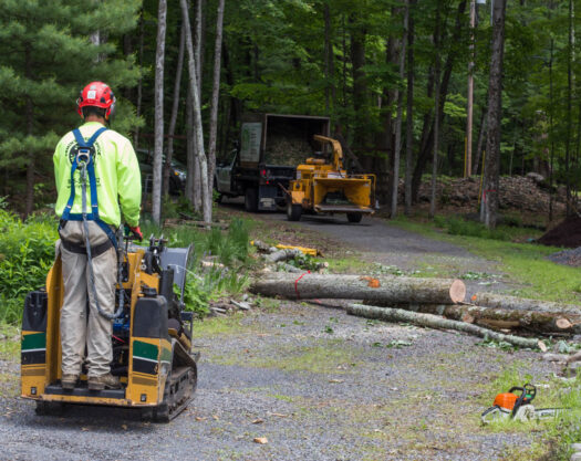 Emergency tree removal-Myrtle Beach Tree Trimming and Stump Grinding Services-We Offer Tree Trimming Services, Tree Removal, Tree Pruning, Tree Cutting, Residential and Commercial Tree Trimming Services, Storm Damage, Emergency Tree Removal, Land Clearing, Tree Companies, Tree Care Service, Stump Grinding, and we're the Best Tree Trimming Company Near You Guaranteed!