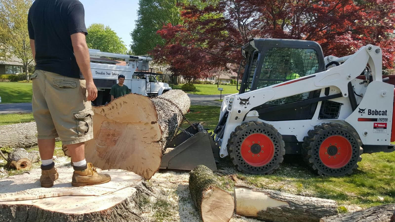Services-Myrtle Beach Tree Trimming and Stump Grinding Services-We Offer Tree Trimming Services, Tree Removal, Tree Pruning, Tree Cutting, Residential and Commercial Tree Trimming Services, Storm Damage, Emergency Tree Removal, Land Clearing, Tree Companies, Tree Care Service, Stump Grinding, and we're the Best Tree Trimming Company Near You Guaranteed!