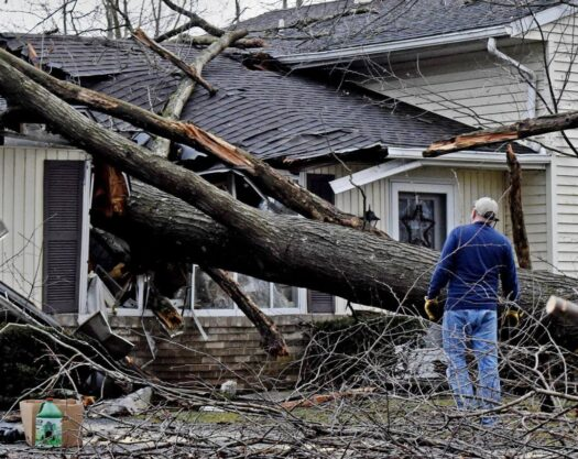 Storm damage-Myrtle Beach Tree Trimming and Stump Grinding Services-We Offer Tree Trimming Services, Tree Removal, Tree Pruning, Tree Cutting, Residential and Commercial Tree Trimming Services, Storm Damage, Emergency Tree Removal, Land Clearing, Tree Companies, Tree Care Service, Stump Grinding, and we're the Best Tree Trimming Company Near You Guaranteed!