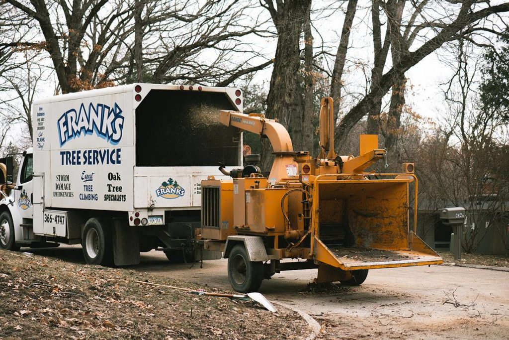 Forestbrook-Myrtle Beach Tree Trimming and Stump Grinding Services-We Offer Tree Trimming Services, Tree Removal, Tree Pruning, Tree Cutting, Residential and Commercial Tree Trimming Services, Storm Damage, Emergency Tree Removal, Land Clearing, Tree Companies, Tree Care Service, Stump Grinding, and we're the Best Tree Trimming Company Near You Guaranteed!