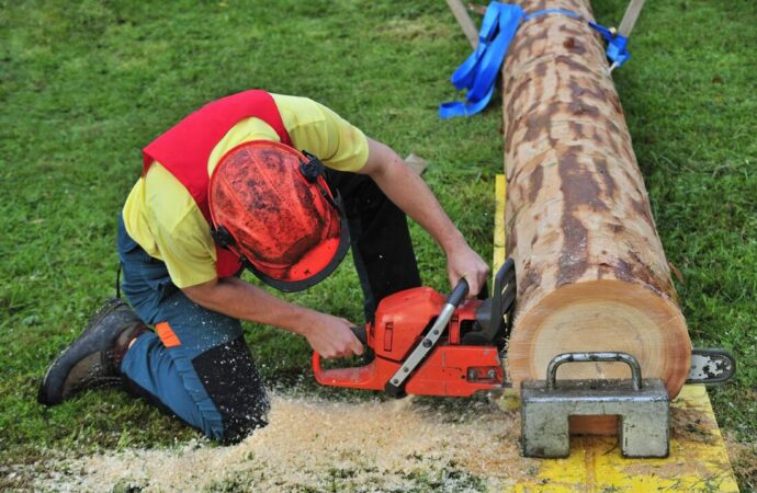 Surfside Beach-Myrtle Beach Tree Trimming and Stump Grinding Services-We Offer Tree Trimming Services, Tree Removal, Tree Pruning, Tree Cutting, Residential and Commercial Tree Trimming Services, Storm Damage, Emergency Tree Removal, Land Clearing, Tree Companies, Tree Care Service, Stump Grinding, and we're the Best Tree Trimming Company Near You Guaranteed!